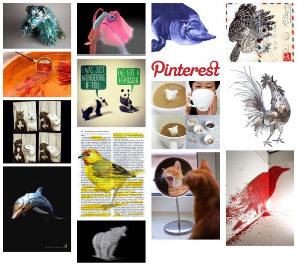 Animal Artworks on Pinterest